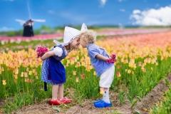 Crianças holandesas no campo de tulipa