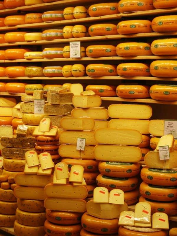 queijo holandês
